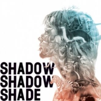 shadow_shadow_shade_record_pic